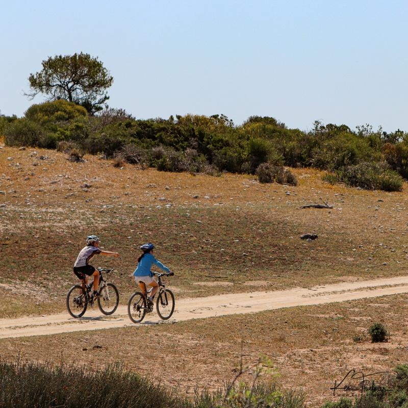 Bike & Saddle Cycle Safari - Buffesfontein - by Ken Treloar Photography - www.kentreloar (28).jpg