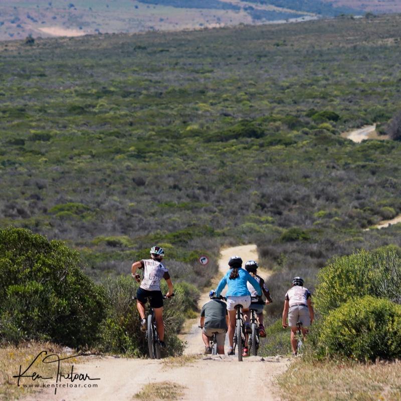 Bike & Saddle Cycle Safari - Buffesfontein - by Ken Treloar Photography - www.kentreloar (30).jpg