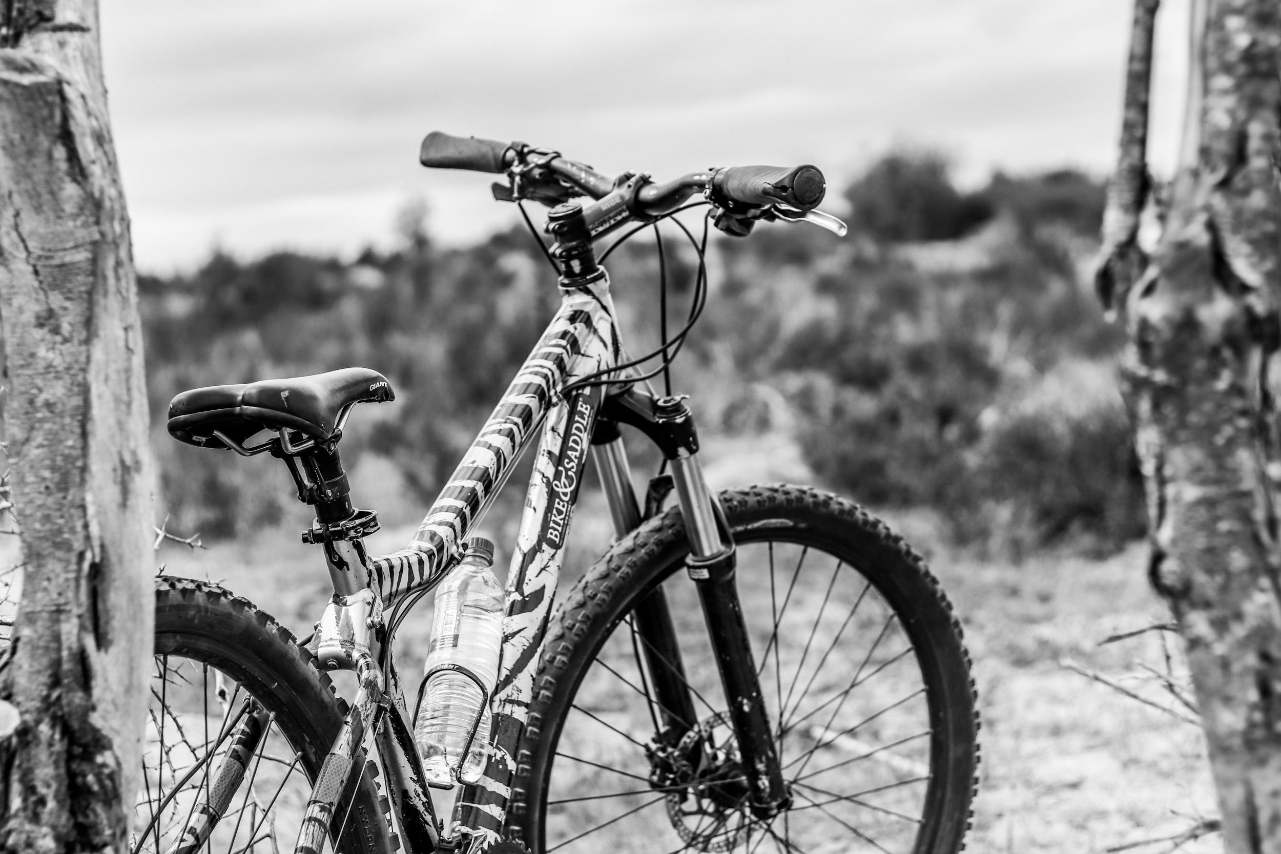 Bike and Saddle - 14 March 2018 (San Tour & West Coast National Park) - by Ken Treloar Photography (43)-2.JPG