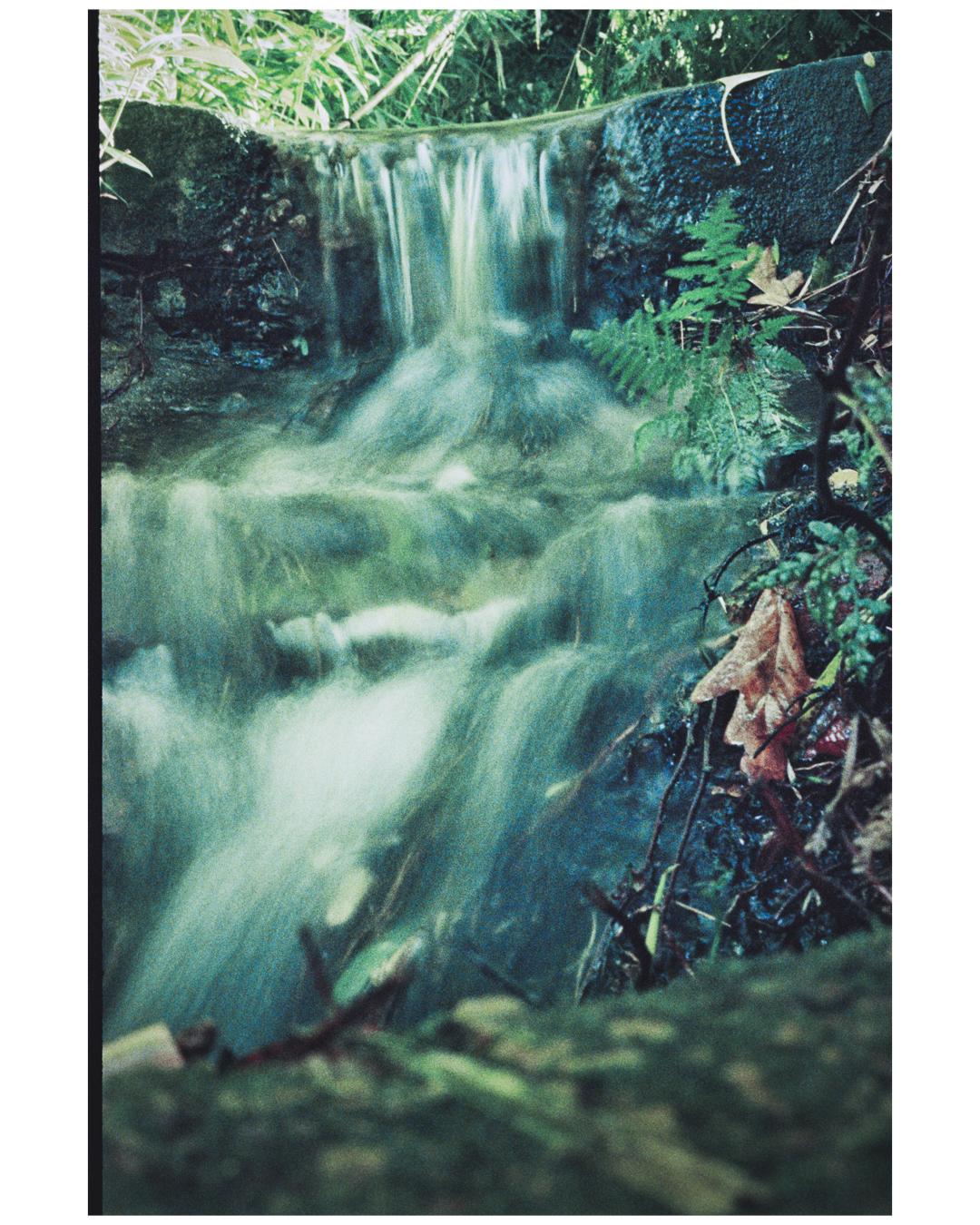 Film Photography Photo Walk 35mm - South Africa - by Ken Treloar Photography-8.jpg