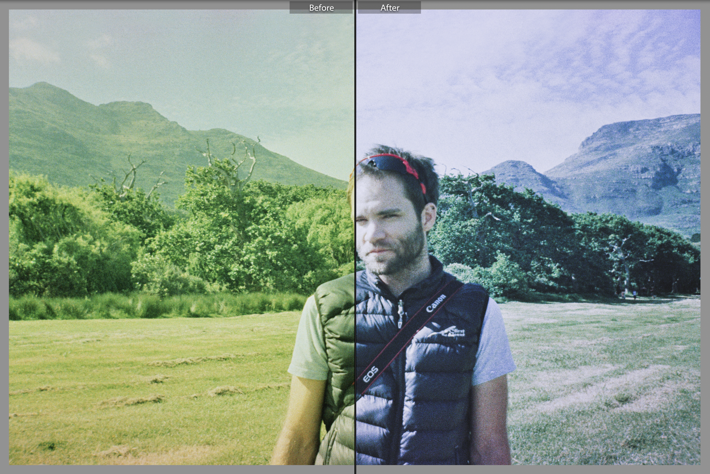 Ken Treloar Cross Process Film Fix Preset Screenshot Before After