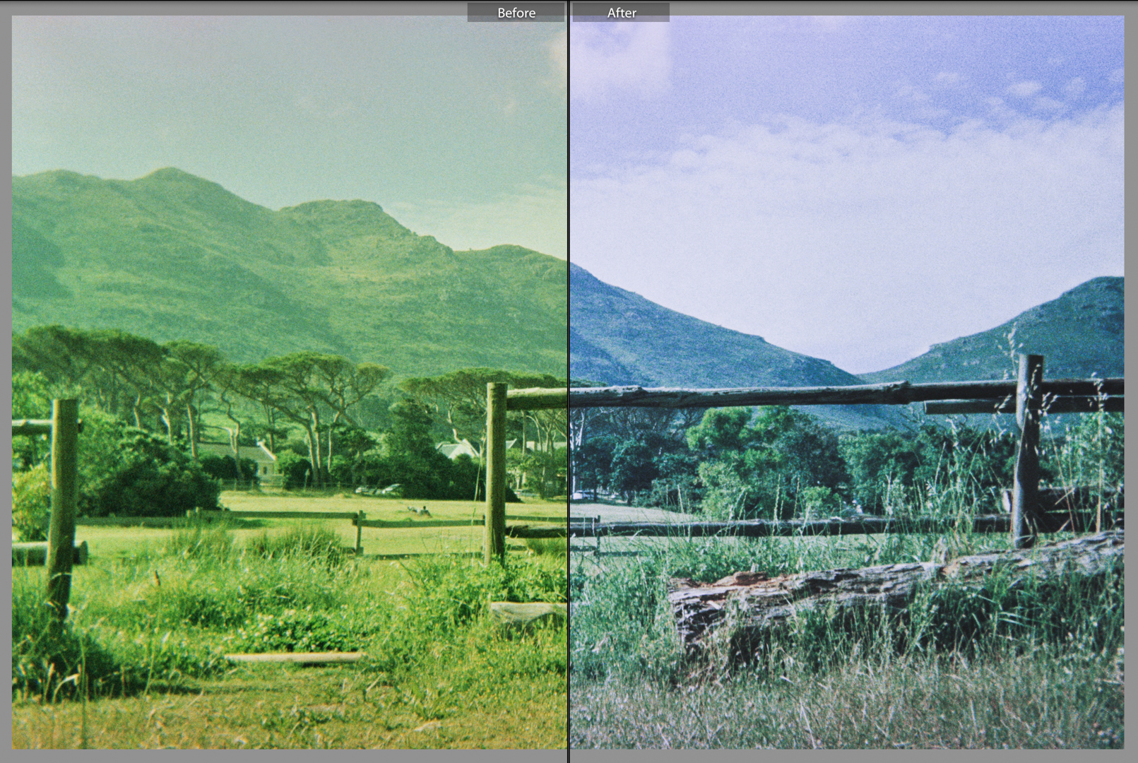 Film Photography Presets 35mm - South Africa - by Ken Treloar Photography.jpg