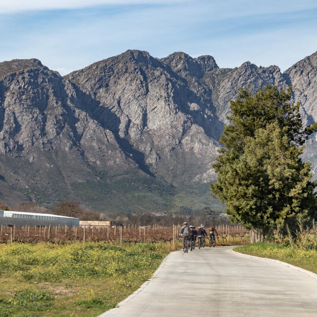 LaBri Wine Tasting & Cycle - Franschhoek, 21 July 2018 South Africa - by Ken Treloar Photography-20.jpg