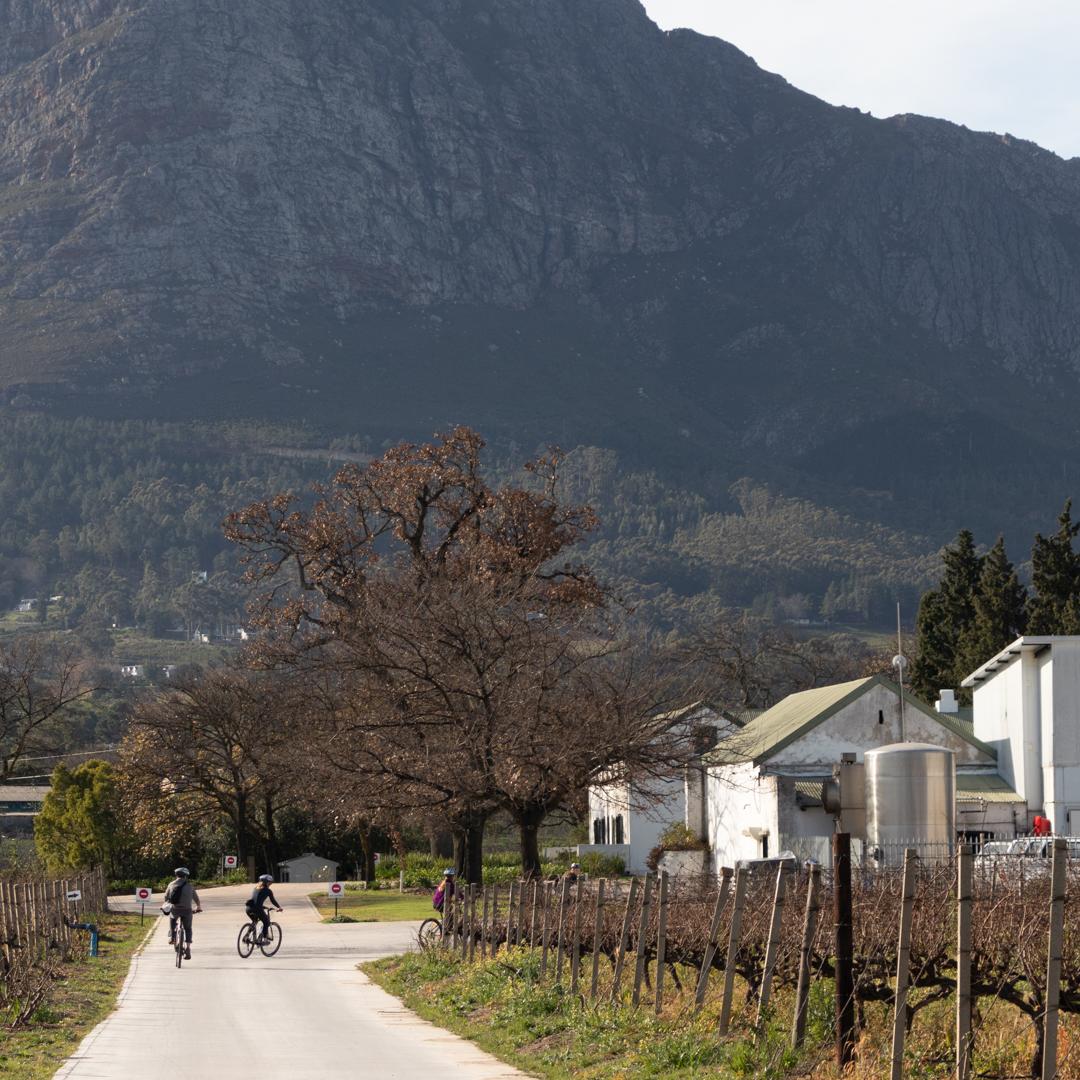 LaBri Wine Tasting & Cycle - Franschhoek, 21 July 2018 South Africa - by Ken Treloar Photography-25.jpg