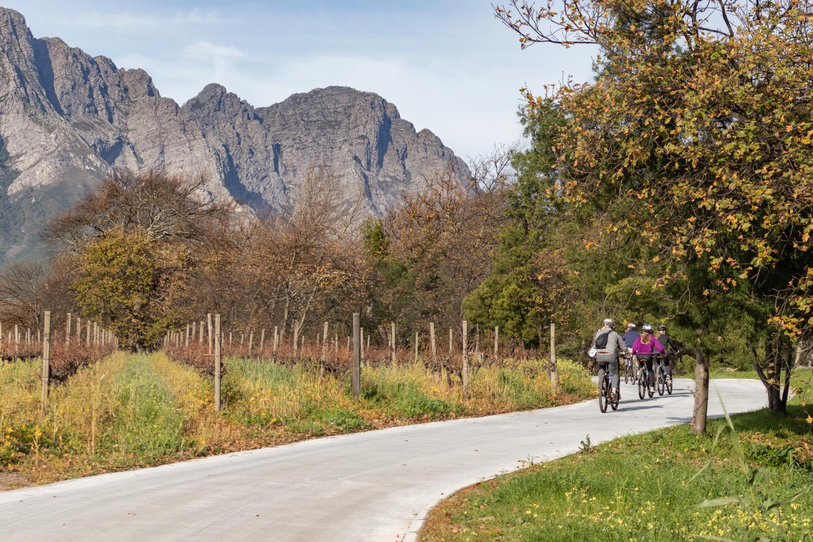 LaBri Wine Tasting & Cycle - Franschhoek, 21 July 2018 South Africa - by Ken Treloar Photography-22.jpg