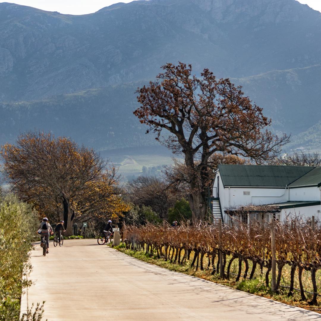 LaBri Wine Tasting & Cycle - Franschhoek, 21 July 2018 South Africa - by Ken Treloar Photography-27.jpg