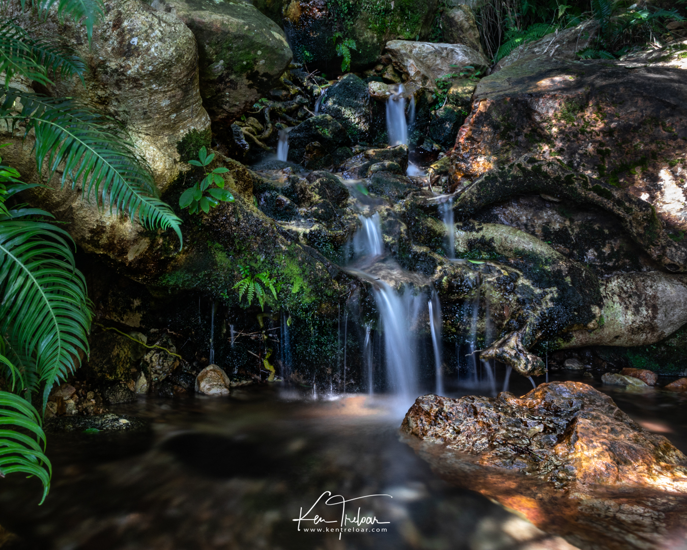 Jonkershoek Hiking Trail, Stellenbosch, South Africa - photo by Ken Treloar Photography 2018 (Low Res)-10.jpg