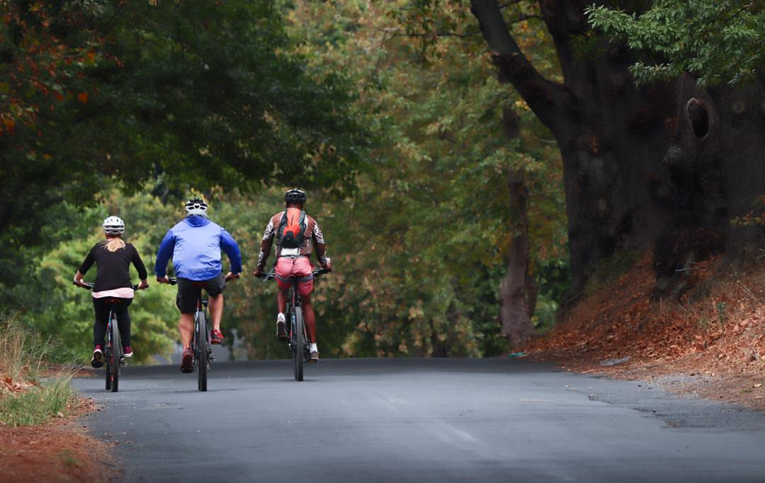 Bike & Saddle - Constantia Valley Cycle - Chris + Dale (March 2018) - photo by Ken Treloar Photography (62).JPG