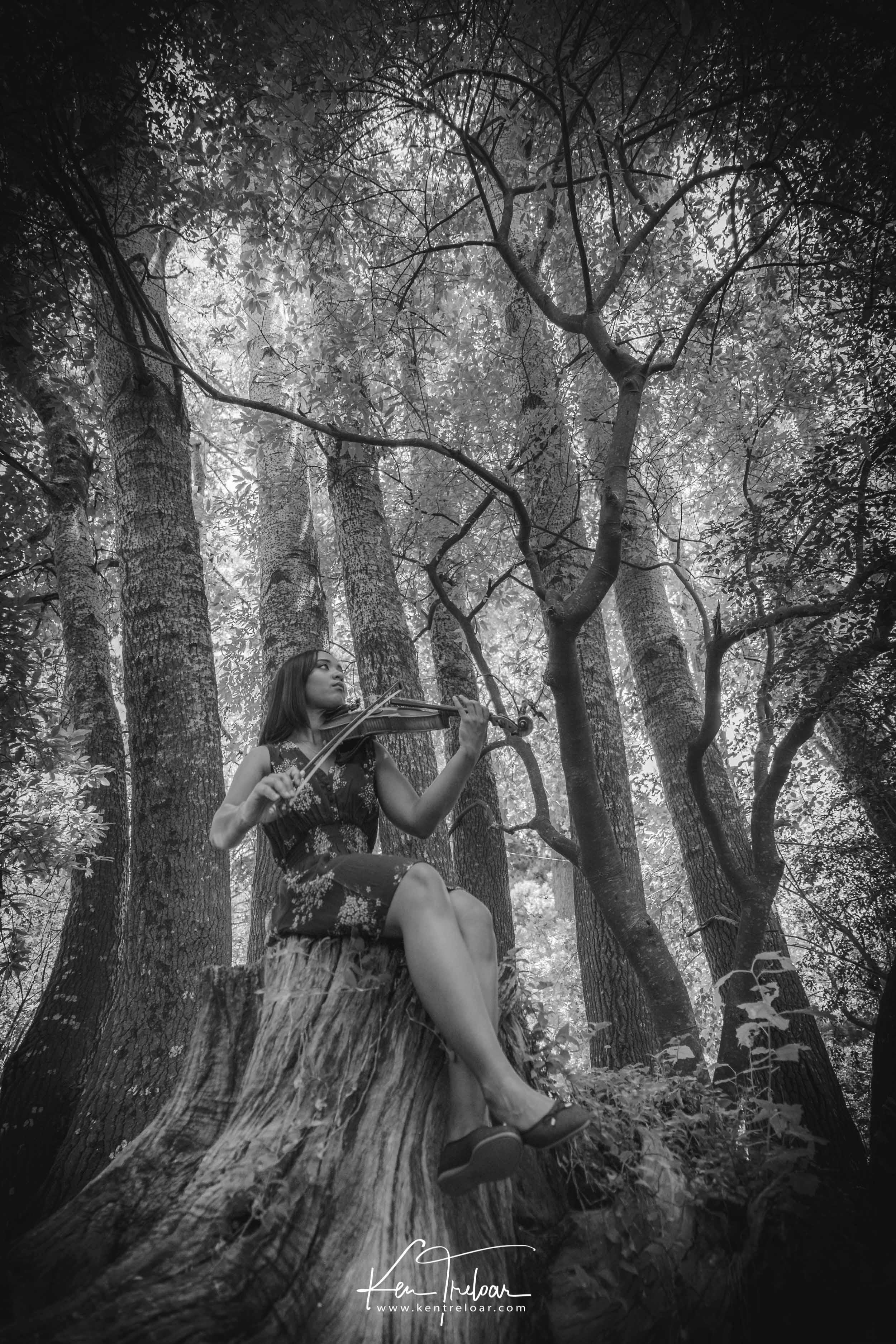 Ken Treloar Photography - Dec 2018 - Violin Woodland Forest Natural Light Portrait Photography - Cape Town-2.jpg