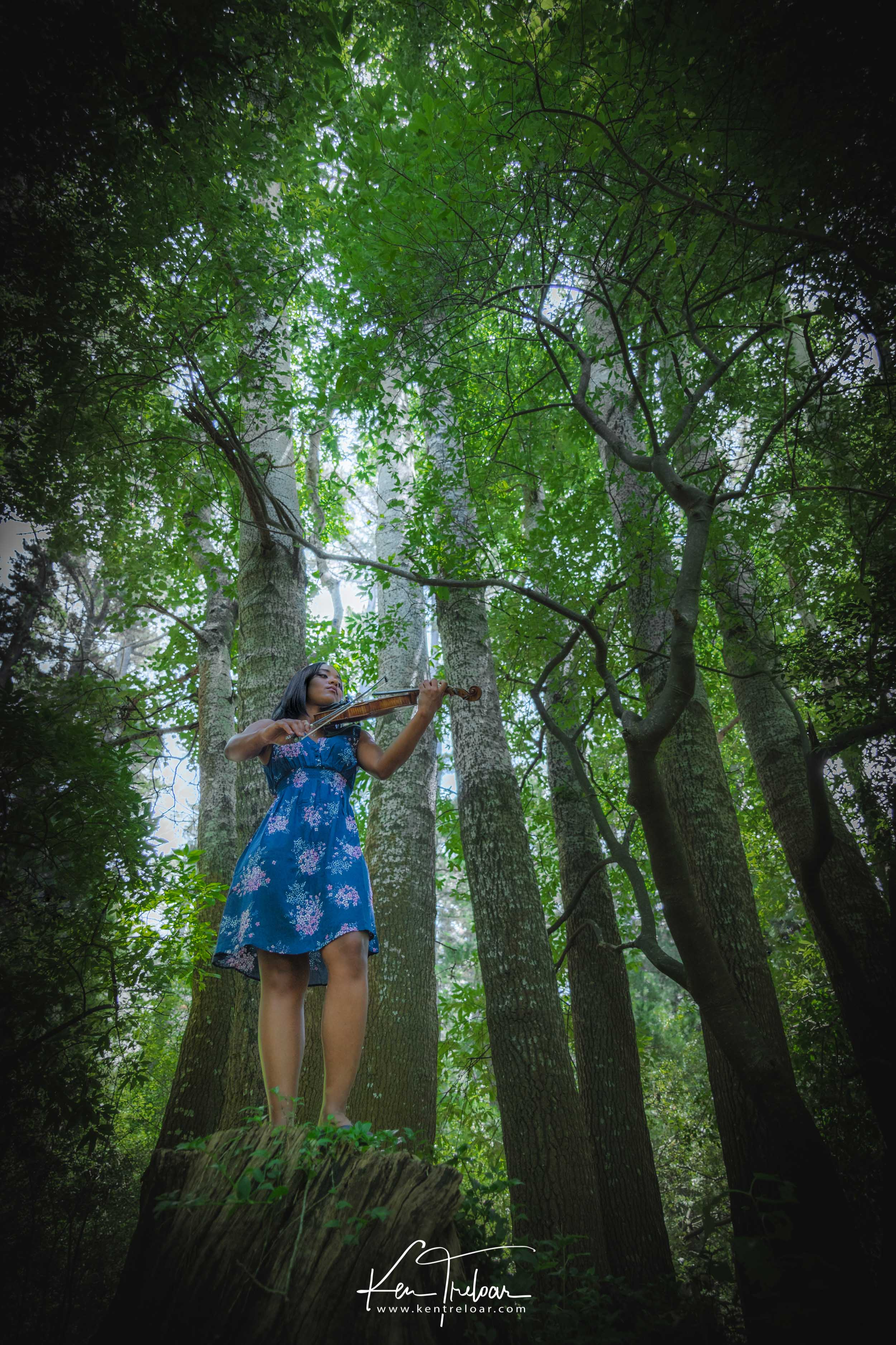 Ken Treloar Photography - Dec 2018 - Violin Woodland Forest Natural Light Portrait Photography - Cape Town-3.jpg