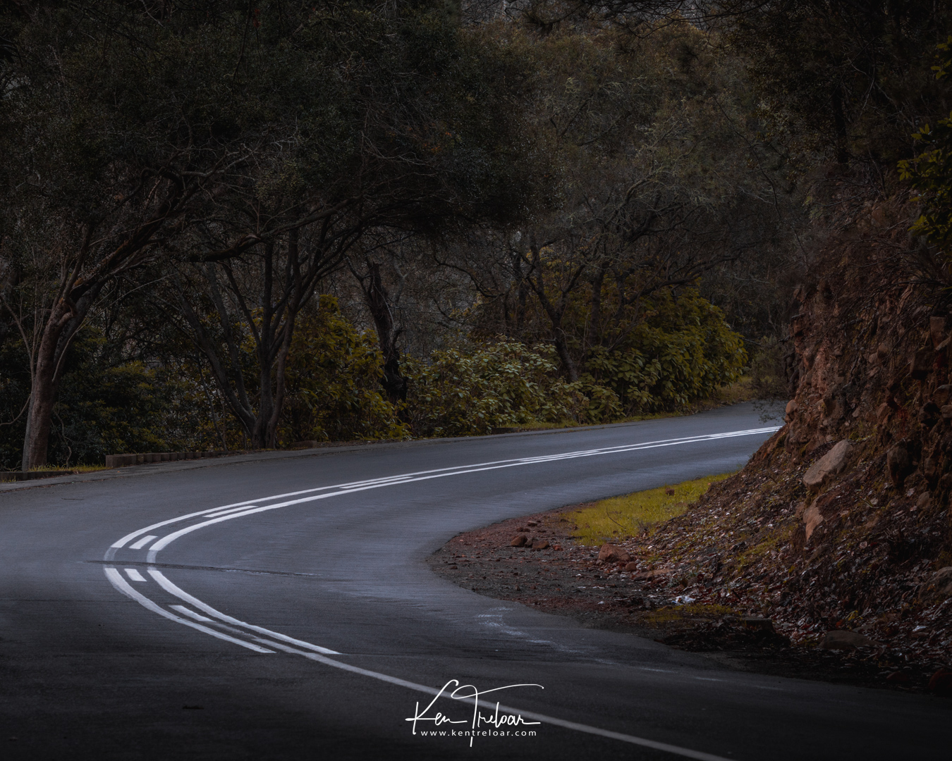Image by Ken Treloar Photography - 2018 - All Rights Reserved (LR)-2.jpg