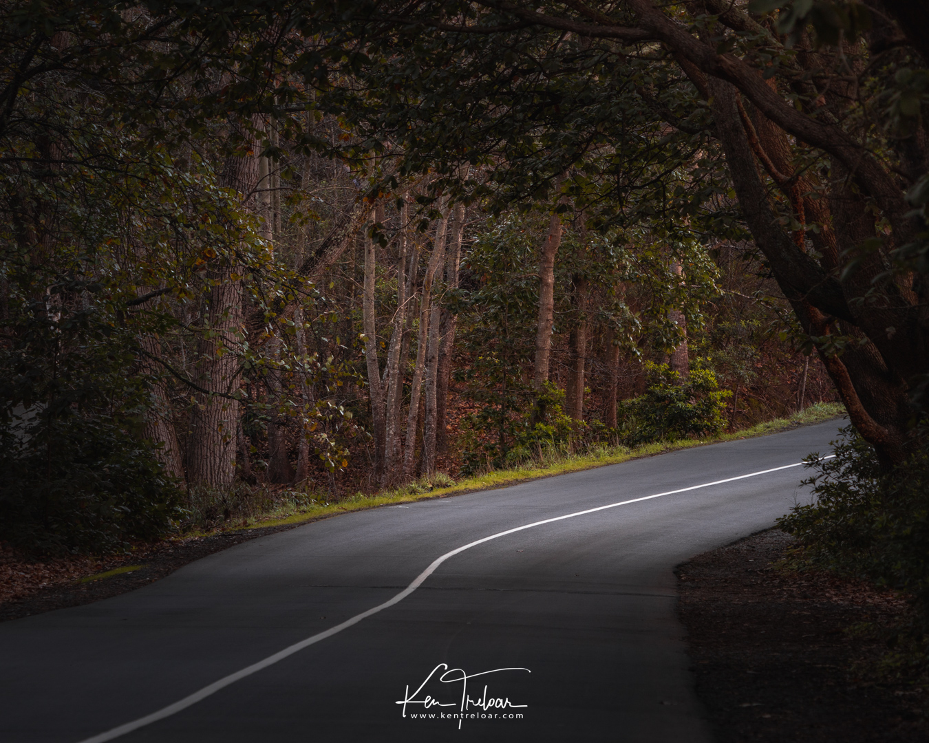 Image by Ken Treloar Photography - 2018 - All Rights Reserved (LR)-4.jpg
