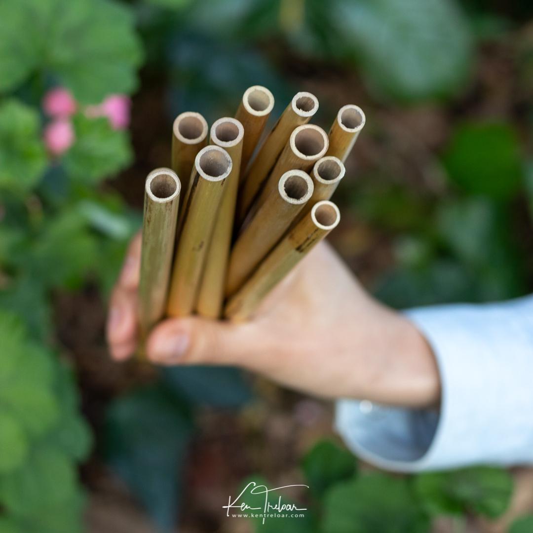 Khanyiso Reed Straws - Zero Plastic - Cape Town-4.jpg