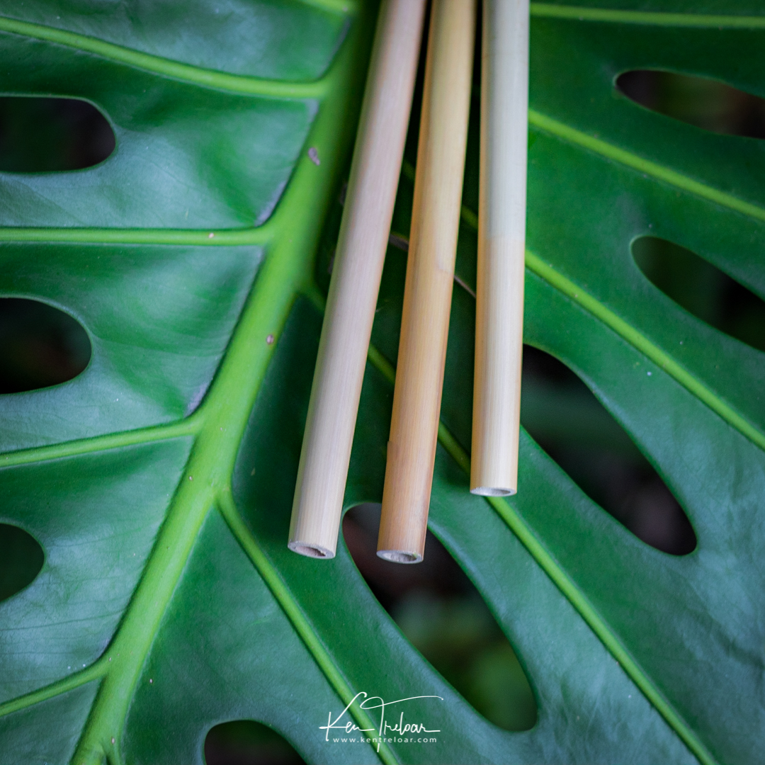 Khanyiso Reed Straws - Zero Plastic - Cape Town-10.jpg