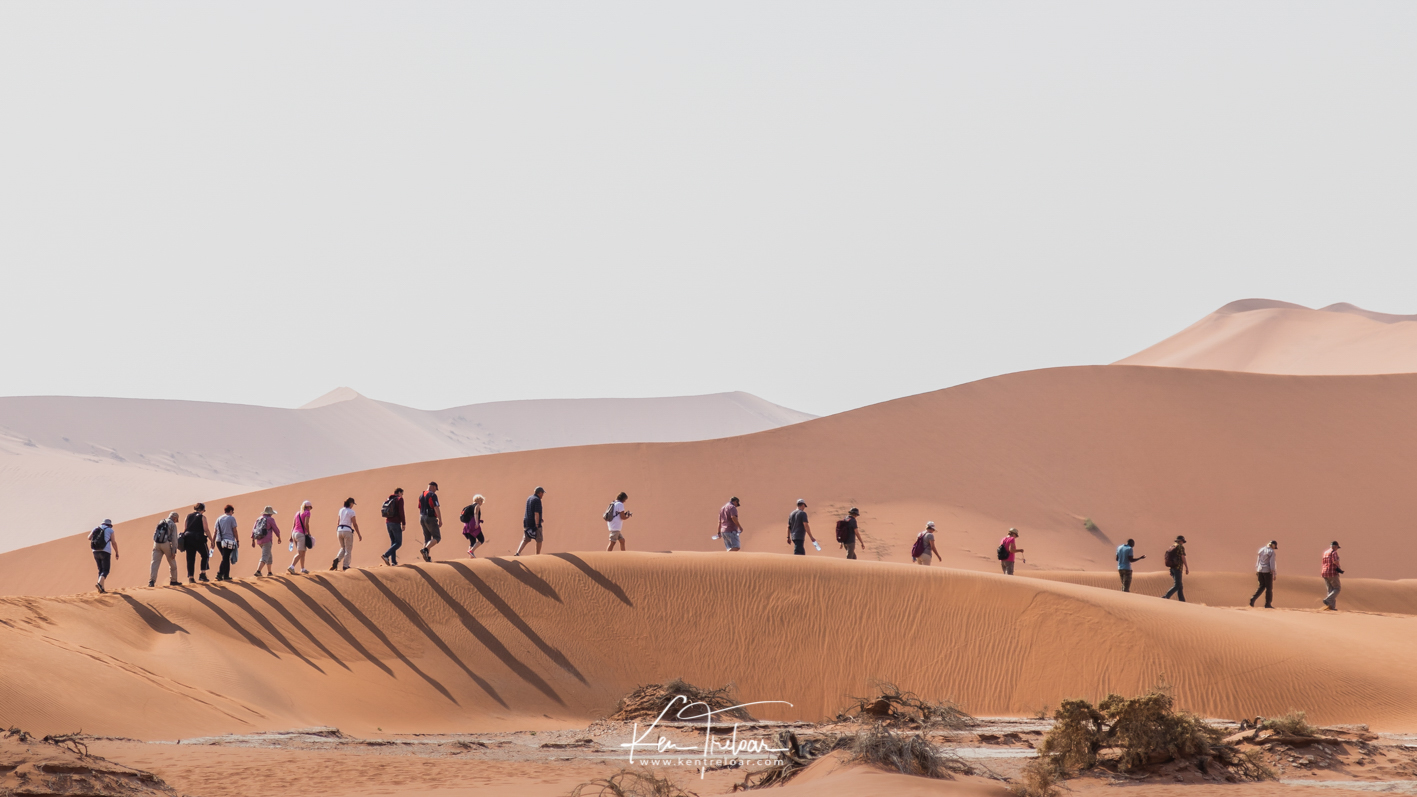The Caravan   A group of tourists make their way to Deadvlei by way of a short walk through the dunes which separate the parking area from Deadvlei proper.