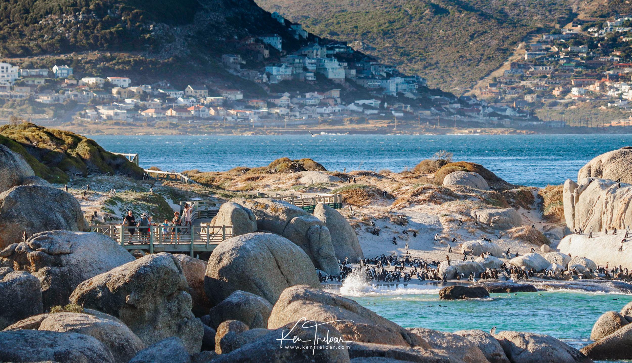 Boulders Beach Cape Town South Africa travel destination - Image by Ken Treloar Photography 2019-2.jpg
