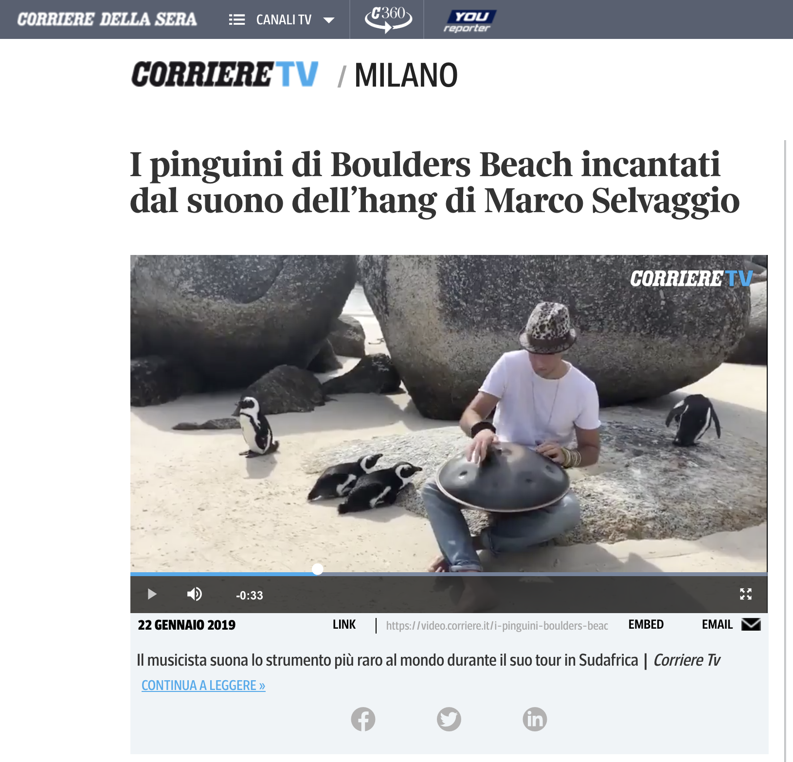 I Pinguini di Boulders Beach - Marco Selvaggio - Video, Tearsheet Image -  Ken Treloar.png