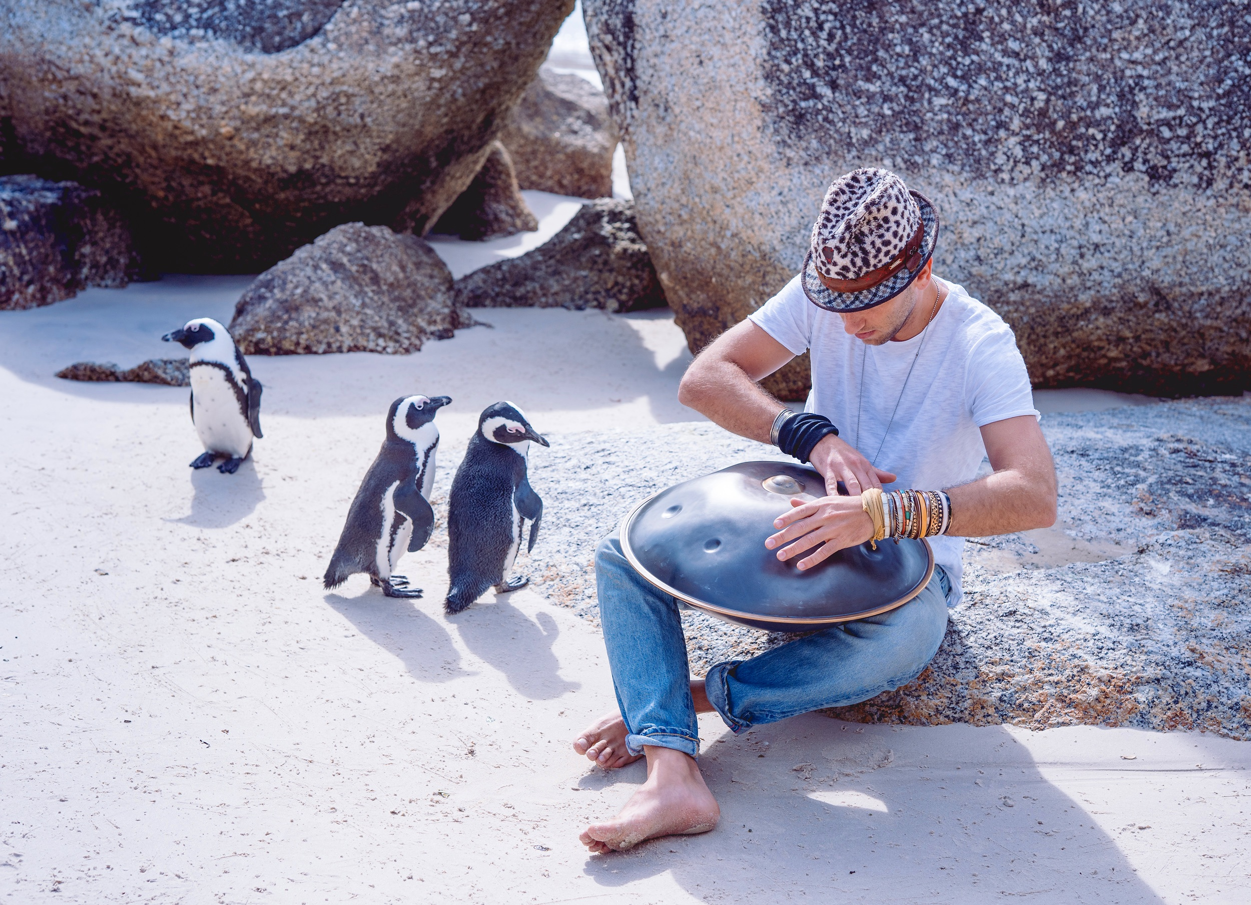 Marco Selvaggio - Boulders Beach Simonstown, Cape Town South Africa - Image by Ken Treloar Photography 2019-6.jpg