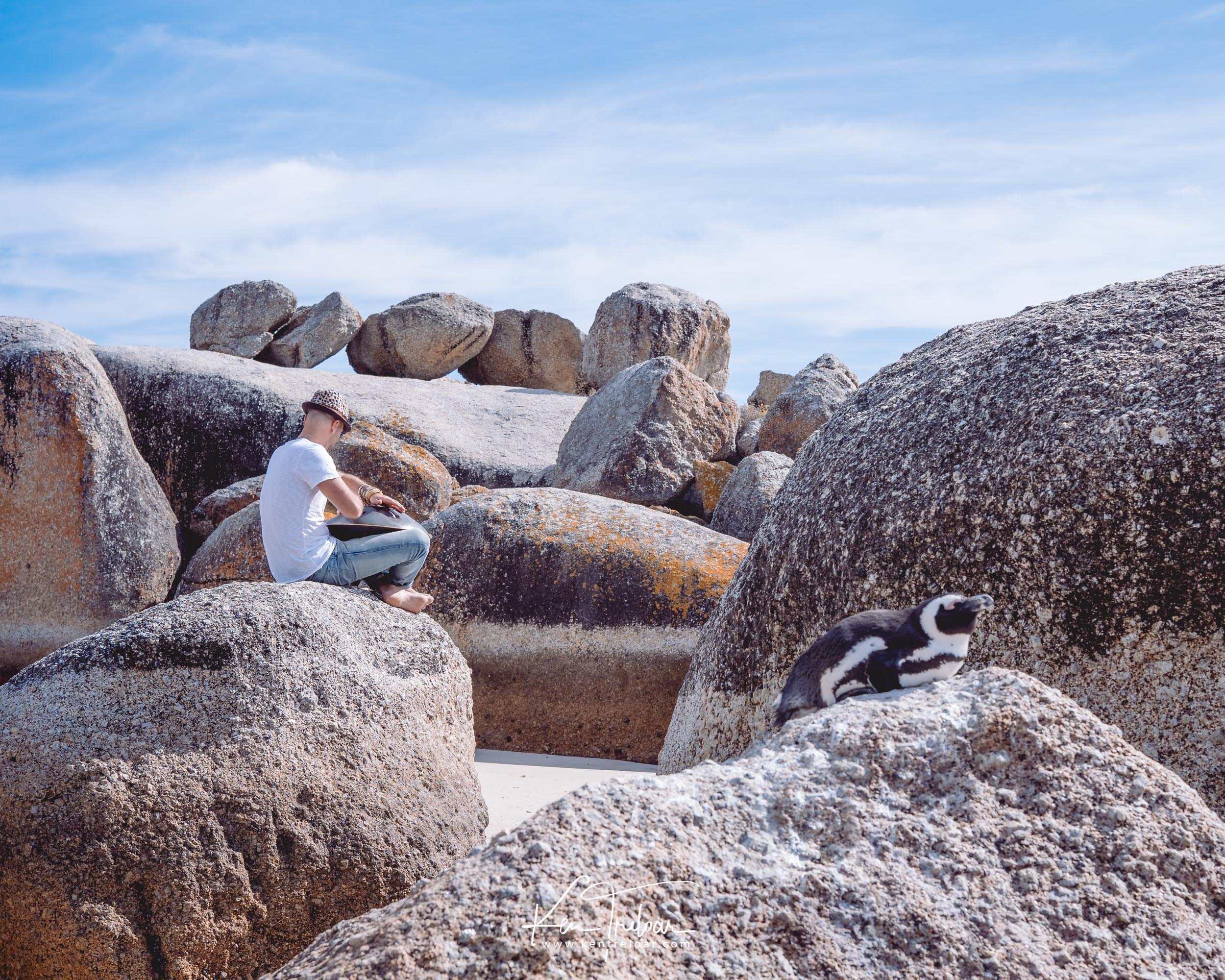 Marco Selvaggio - Boulders Beach Simonstown, Cape Town South Africa - Image by Ken Treloar Photography 2019-13.jpg