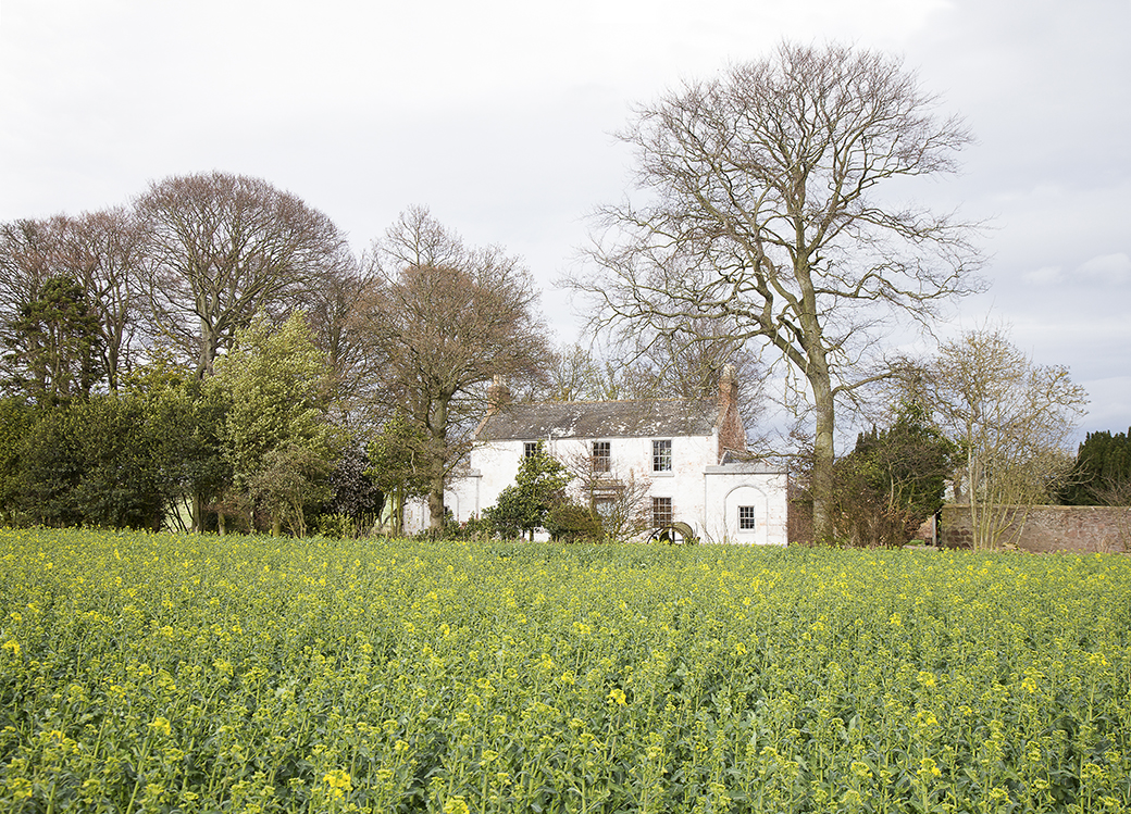 Arlene and David's Lovely Home