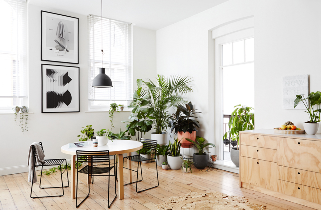 8 Stylish Ways To Decorate Live With Plants Decor8