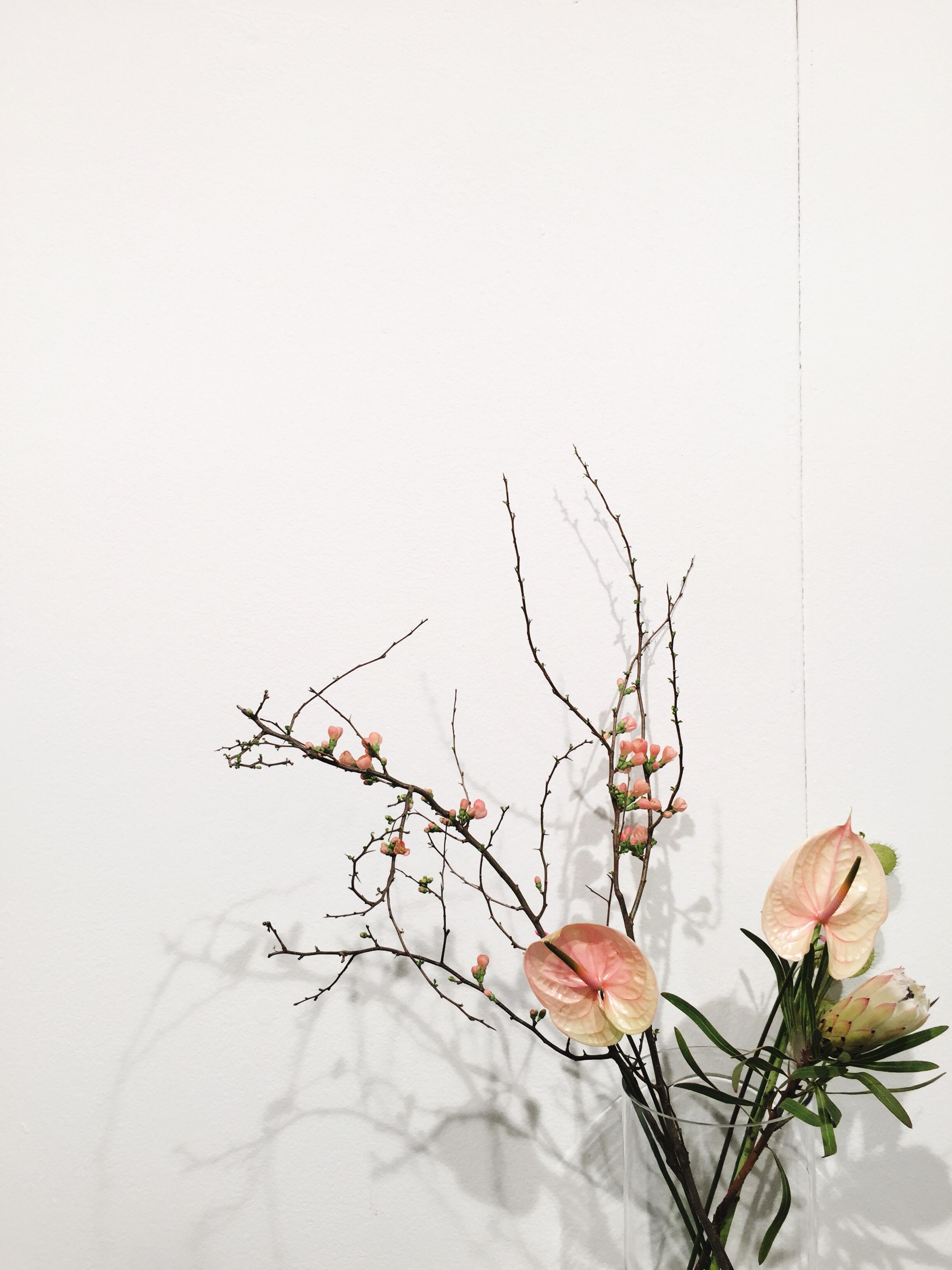 formland_flowers.JPG