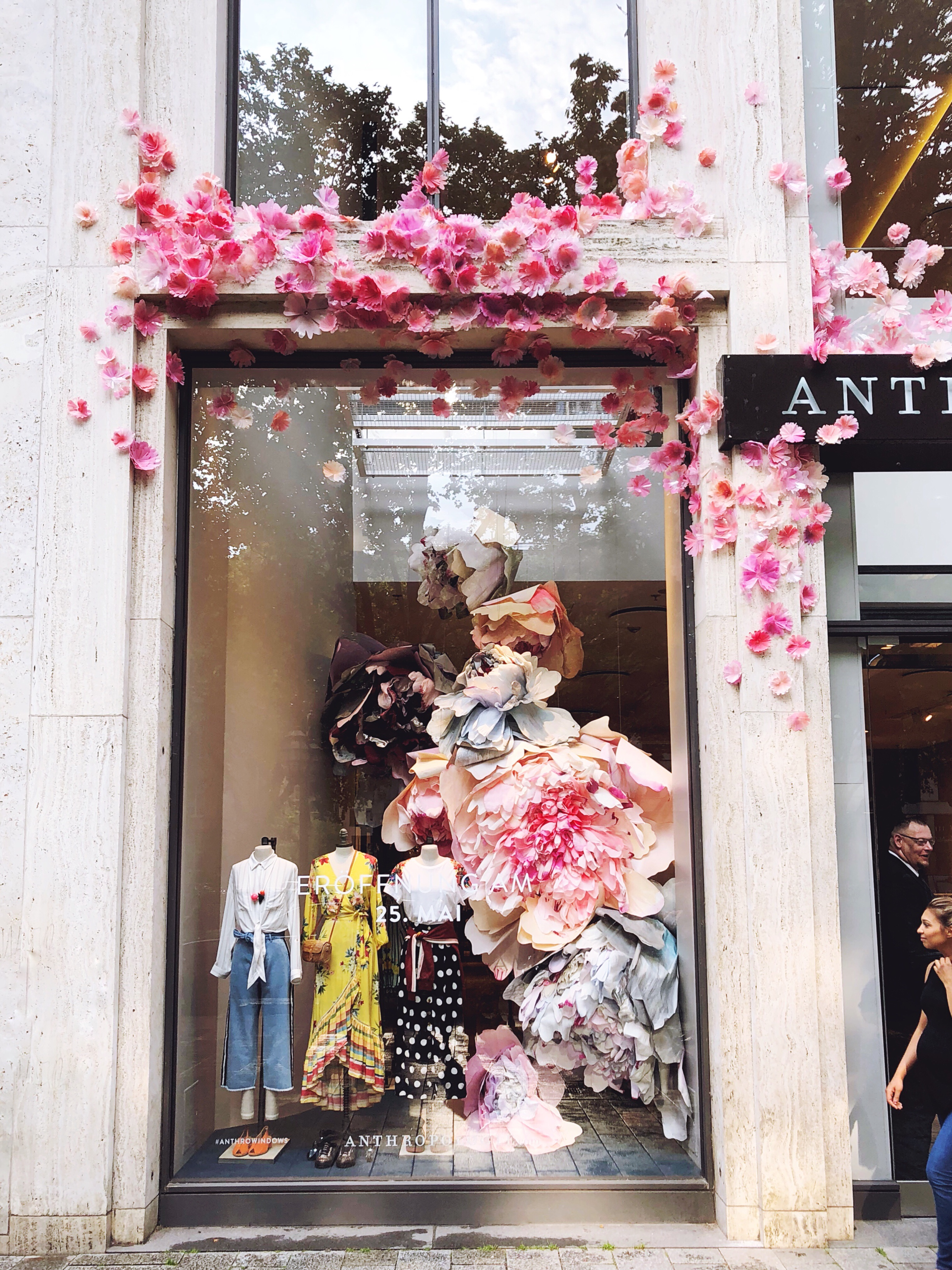 Düsseldorf Anthropologie Store Window