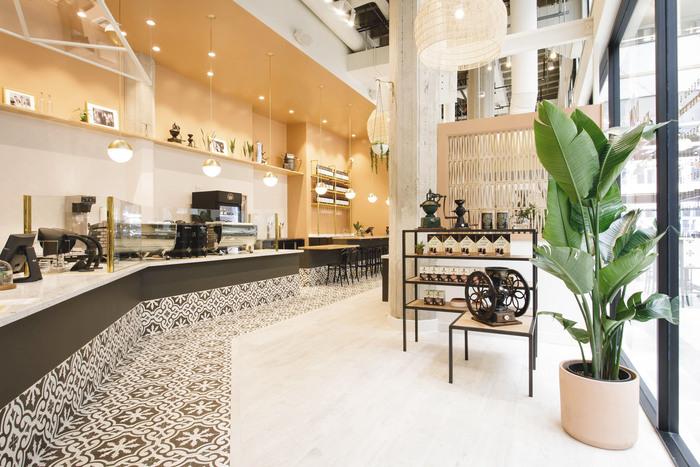 Don Francisco's Coffee Casa Cubana