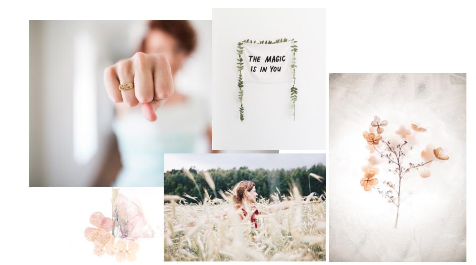 Photos: Unsplash, Collage, Holly Becker