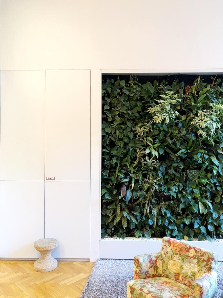Green Wall in the reception area
