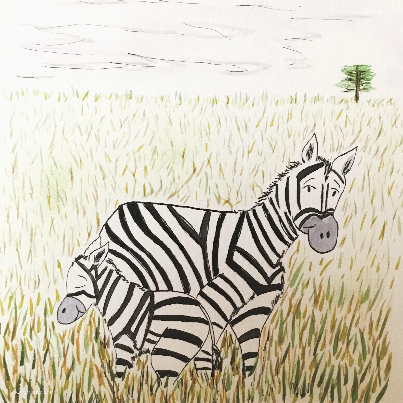 zebra-moncharis-2.JPG