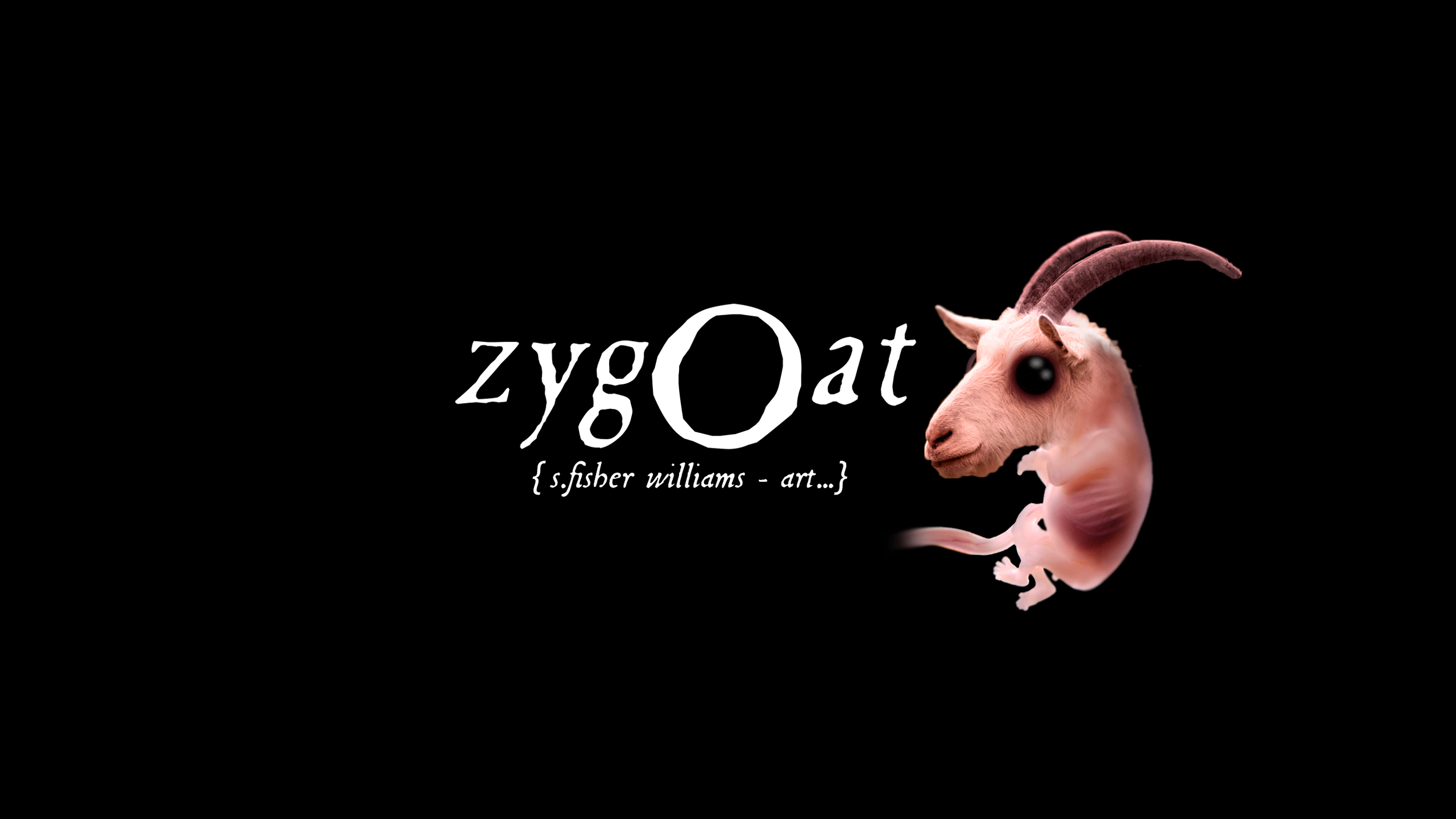 zygoat will become the face of my store…