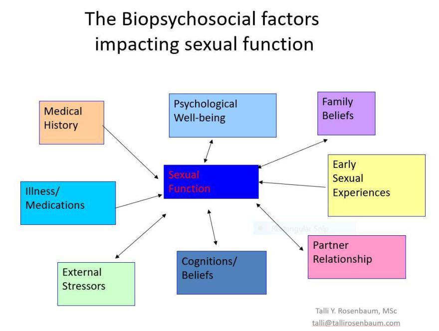 biopsychsocial.jpg