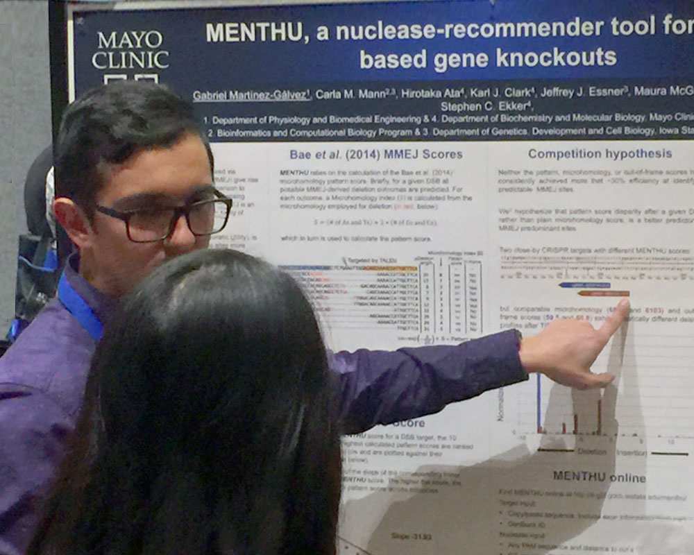 Gabriel Martínez-Gálvez, PhD Candidate,  Biomedical Engineering and Physiology, Ekker group at Mayo Clinic. Permission to publish the photos was granted by the author of the poster.