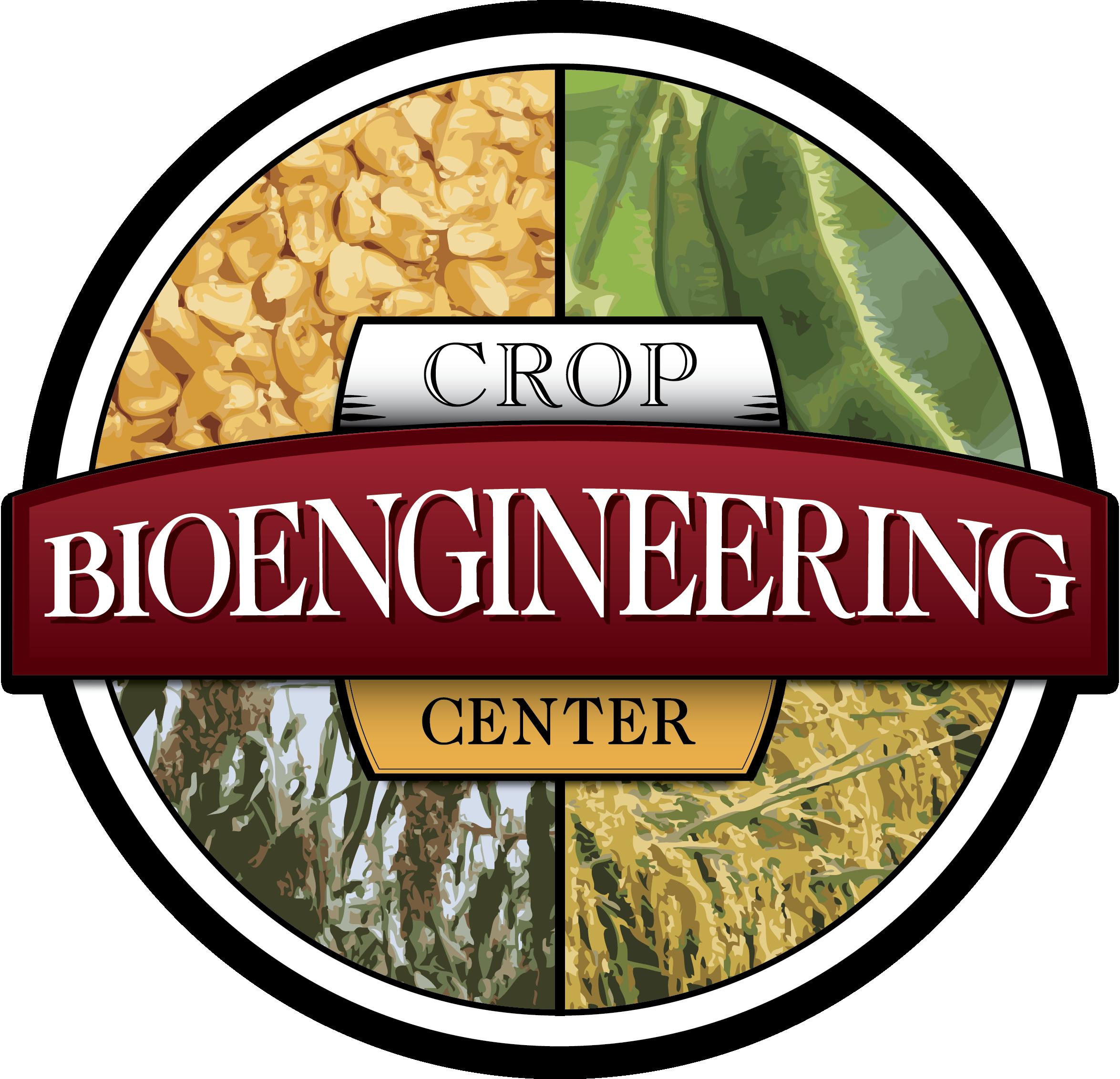 crop bioengineering.png