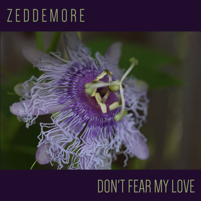 """Don't Fear My Love"" Single"