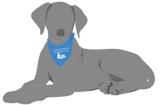 Certified Reading Assistance Dog