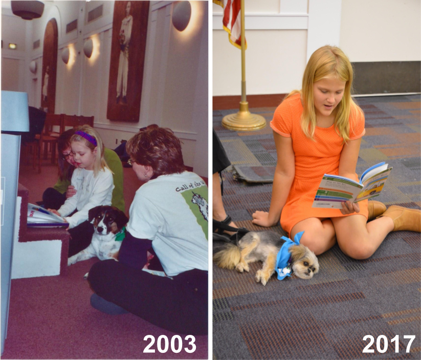 LEFT:  First SitStayRead Dog, Shandy, listens to a student read a book she found in the library.   RIGHT:  A student reads out loud to Certified Reading Assistance Dog Bambi.