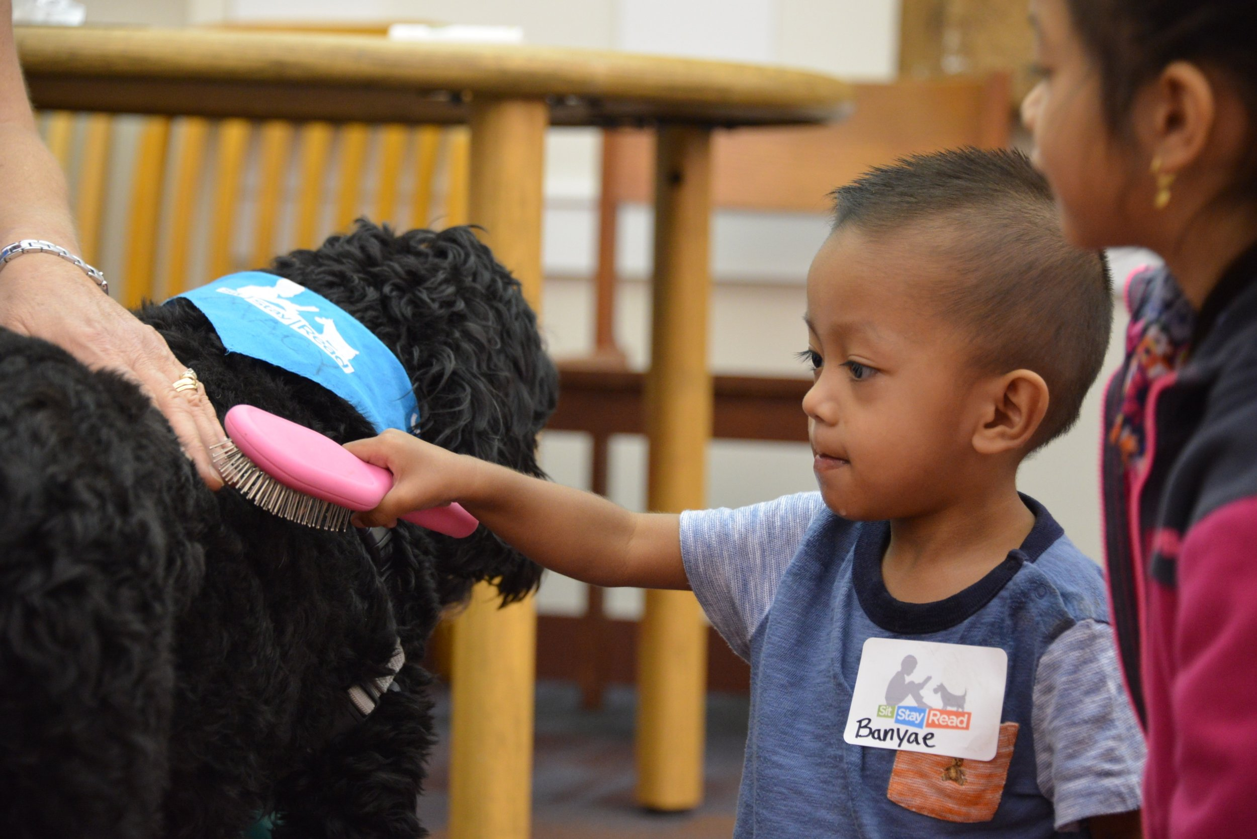 Student Banyae learns how to brush Certified Reading Assistance Dog, Macy!
