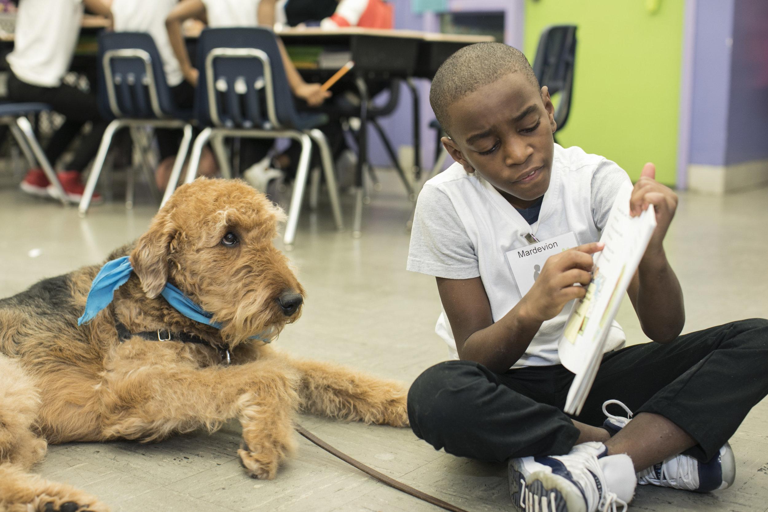Buddy listining to Mardevion read A Dog Named Sam.jpg
