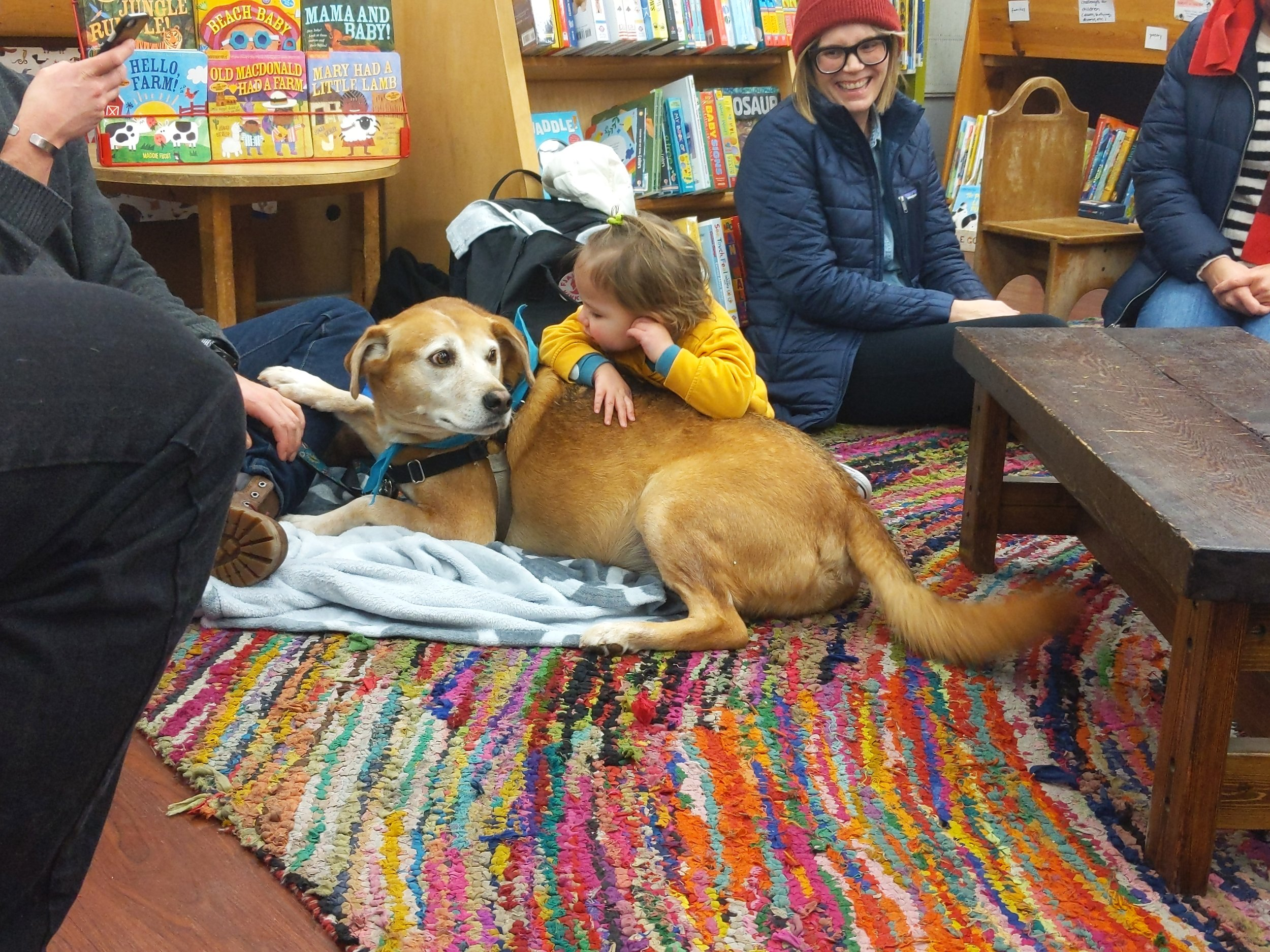 Certified Reading Assistance dog Cosí Fan Tutti visits with someone at Women & Children First