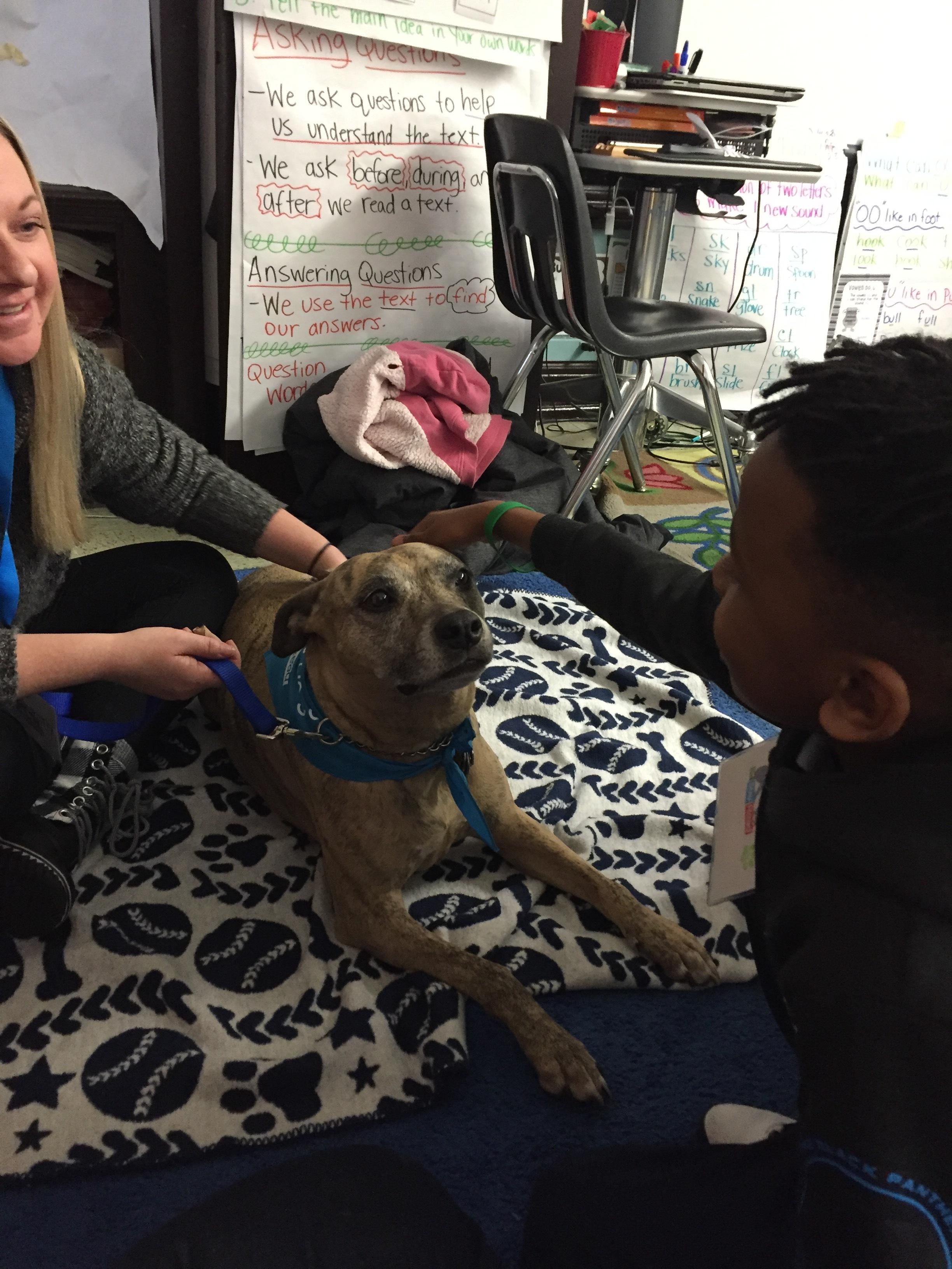 Student petting Dallas.JPG
