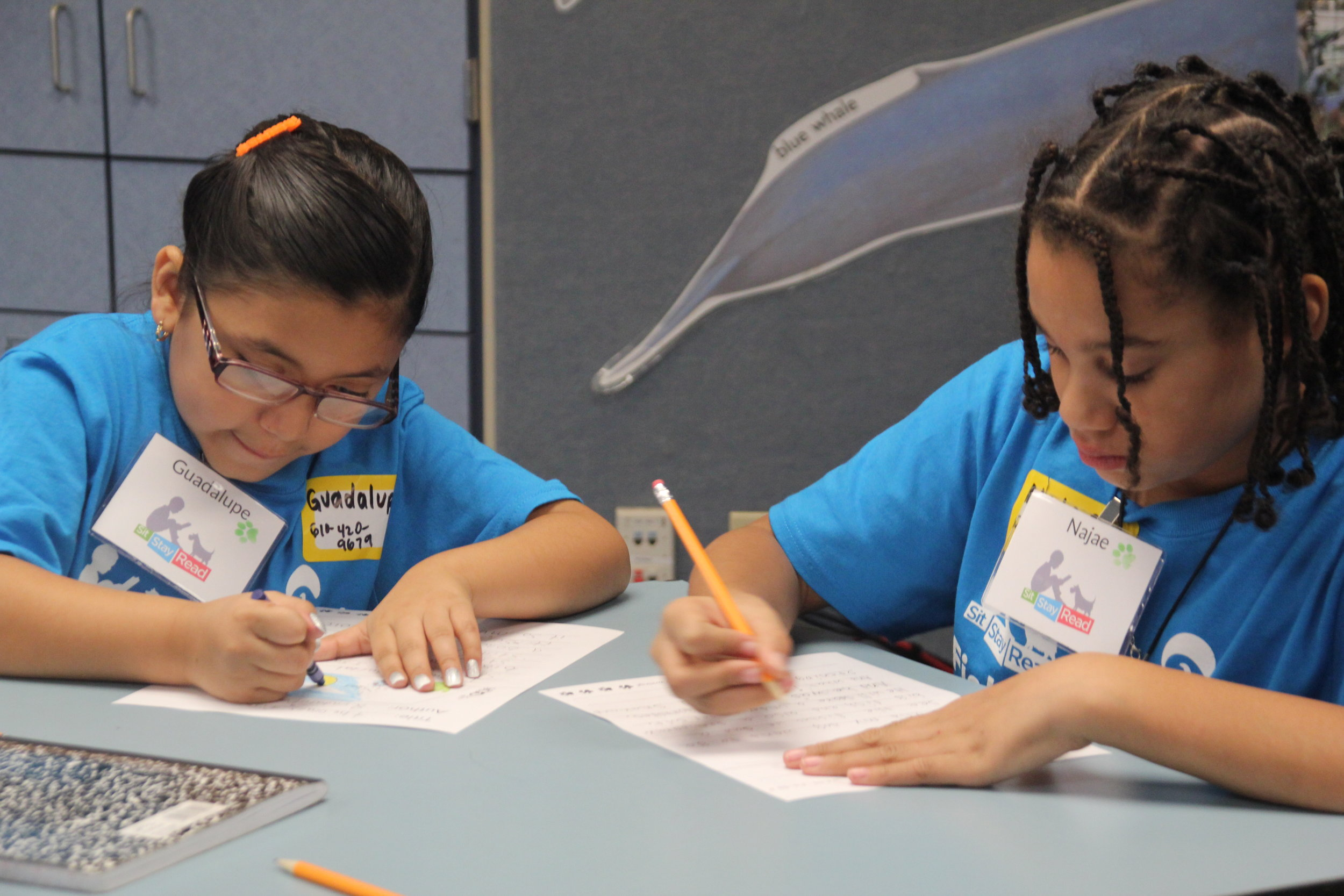 Students writing their creative stories at the Shedd Aquarium. These stories inspired the story for Where Are You, Dozer?