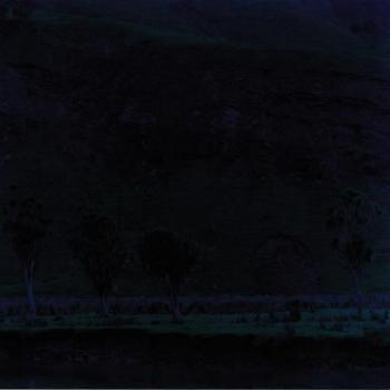 hoki-landscape_350.jpg