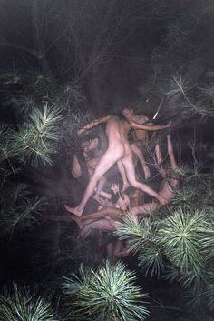 Ryan McGinley 'Tree #2'
