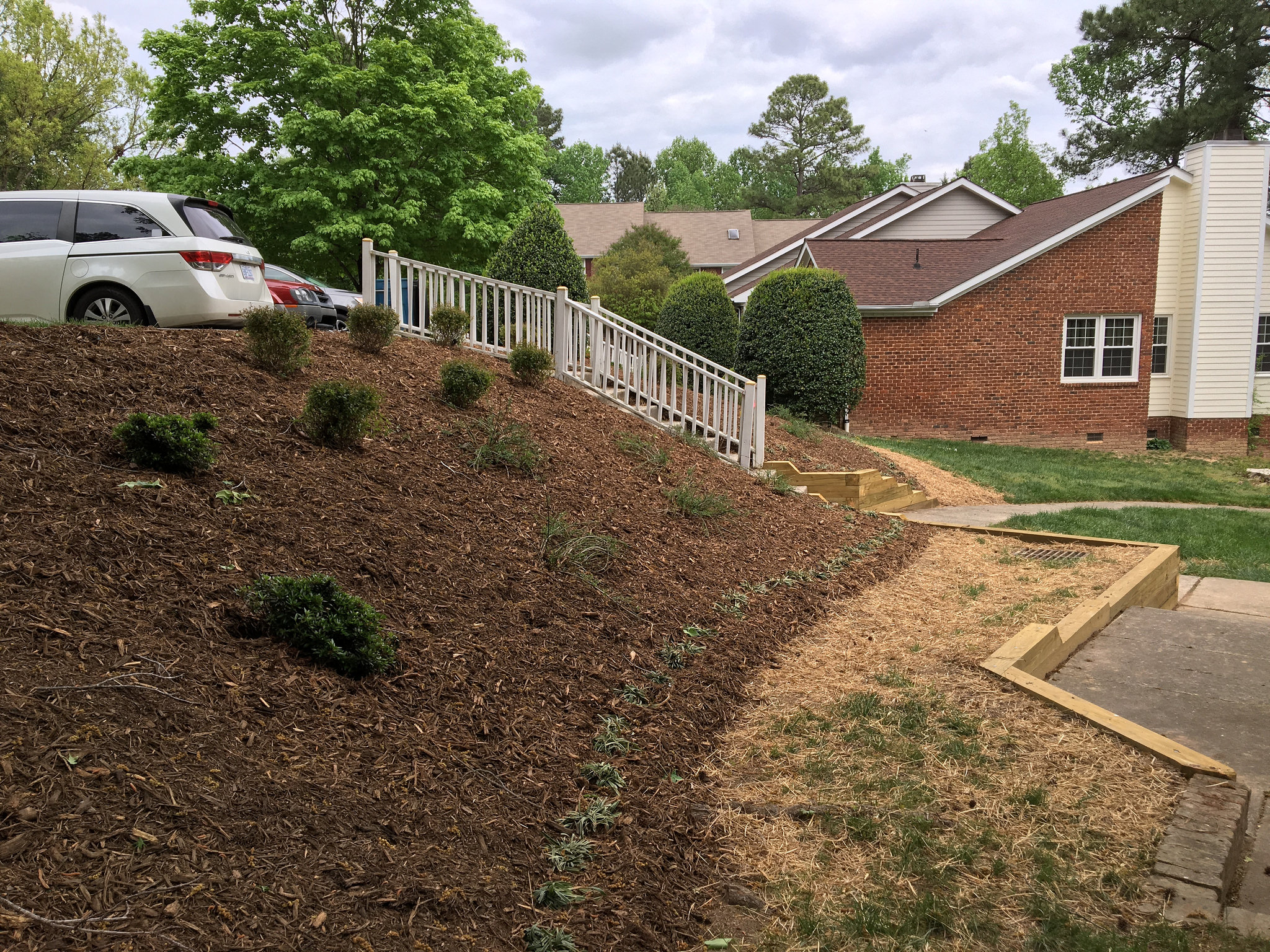 New plantings and grass coming up.
