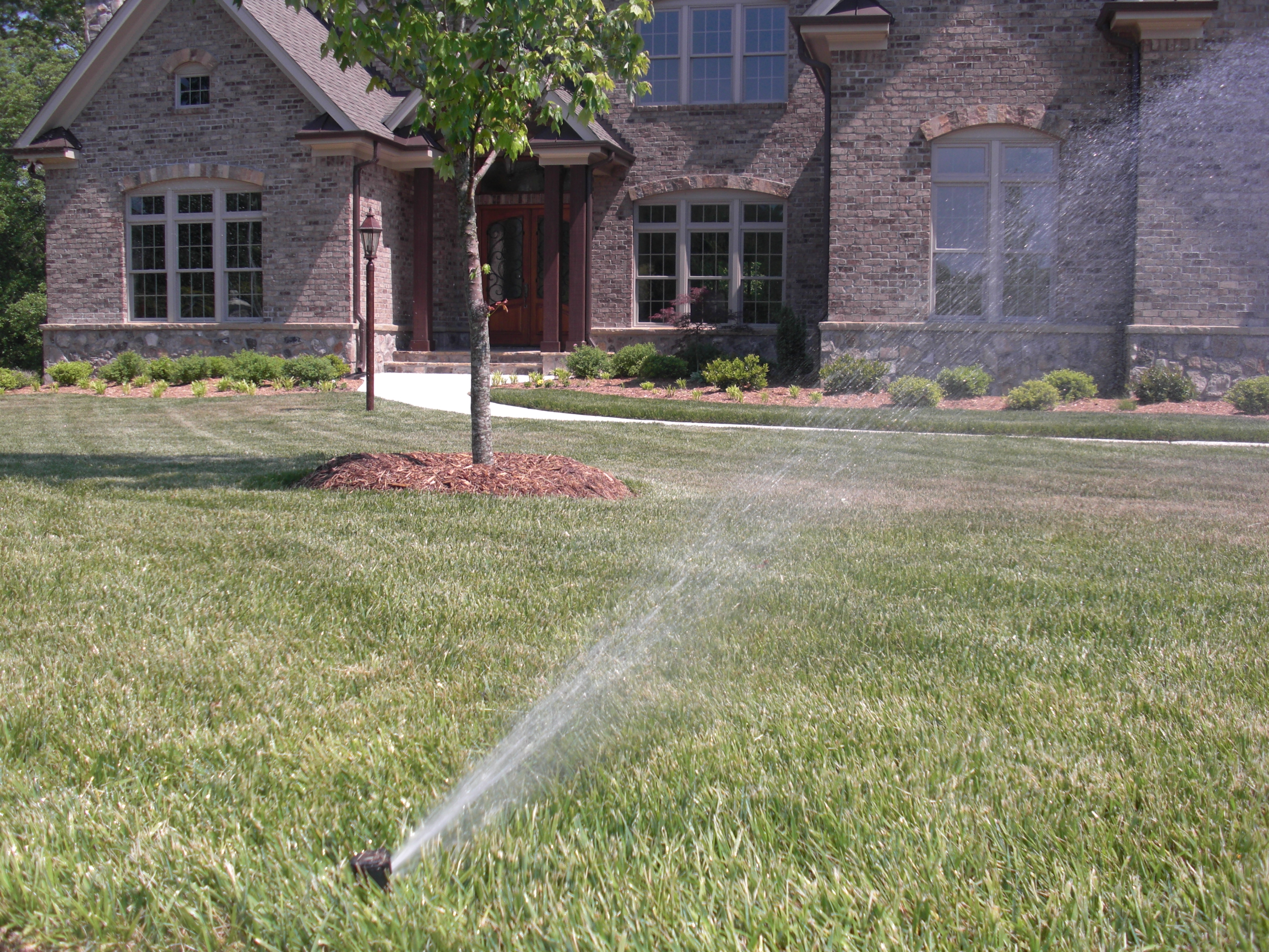 TLG-Irrigation-5.JPG