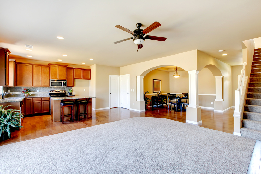 New Carpeting Laid in Living Room and Stairs (Medium Size).jpg