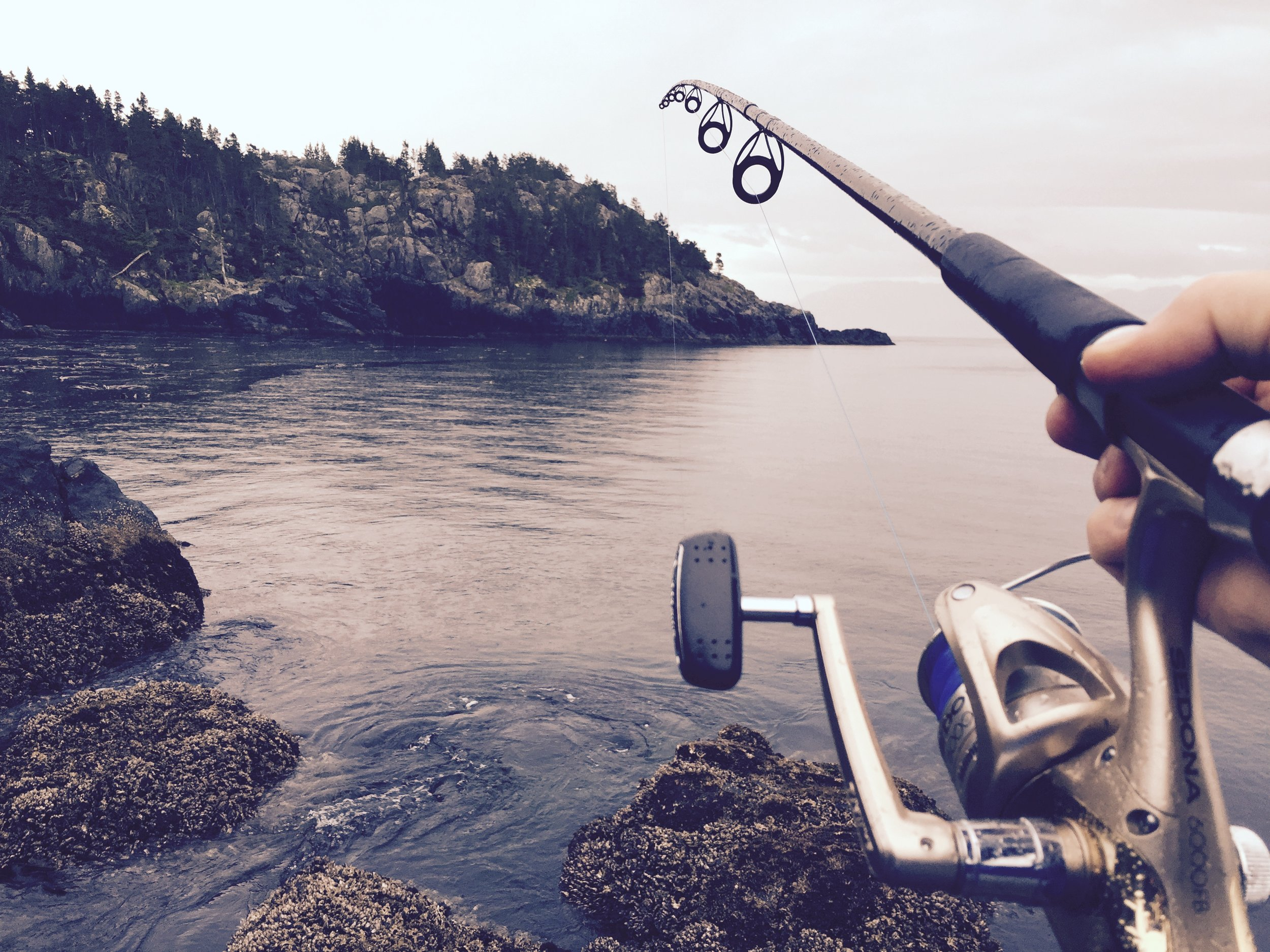Greater atlantic regional fisheries office - New England recreational fishing workshops - 2019 (Photo courtesy of unsplash)