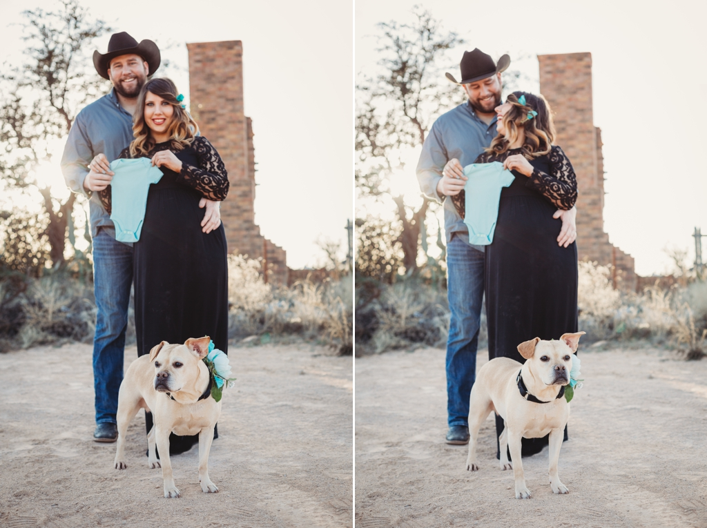 maternity pictures with a dog idea